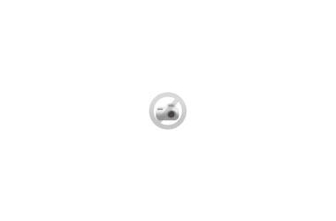 Table de réunion Ovale - 240 x 110 cm